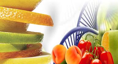 pakissancom pakistans largest agri web portal connecting agri community   farming