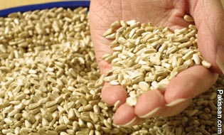 Seed production technology