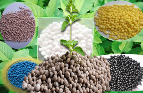 Fertilizer available in Pakistan : Pakissan.com