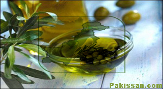 Italy to help Pakistan promote olive farming :-Pakissan.com