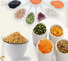 Import of pulses up by 56.24 percent  :- Pakissan.com