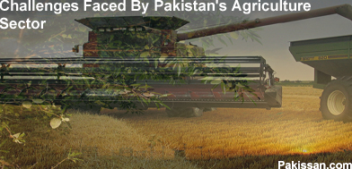 agricultural problems in pakistan The magnanimity of the agricultural problems in pakistan has undoubtedly crippled the economy in 1947, agriculture's contribution of gdp was 53% that has shrunken down to 21% last year.