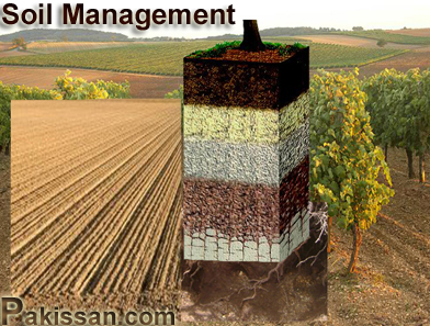 Opinions on soil management for Uses of soil in english
