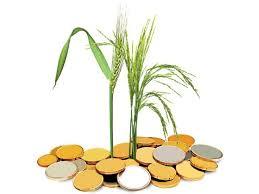 Agri Finance