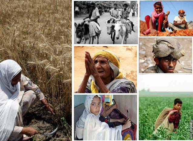 "alleviation of poverty in pakistan essay I just read an article about poverty in pakistan working on my final project etitled "" micro-credit for poverty alleviation""i found your web page."