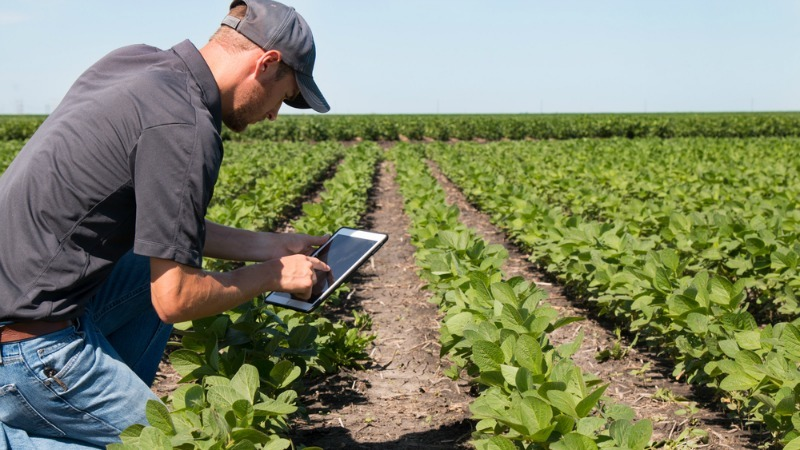 E Farming System Adopting Modern Technology Farmers Move Online